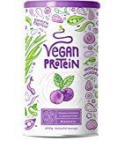 Vegan Protein (Blaubeere) - Protein aus Reis, Hanfsamen, Lupinen, Erbsen, Chia-Samen, Leinsamen, Amaranth, Sonnenblumen- und Kürbiskernen - 600 Gramm Pulver mit natürlichem Blaubeeren Geschmack